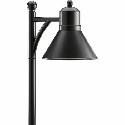 Lomax 1 Light LED Landscape Light Finish: Black