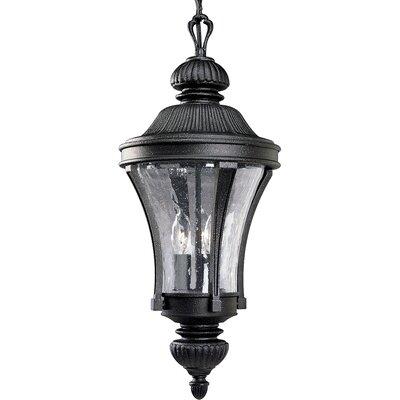Triplehorn 3-Light Traditional Hanging Lantern Finish: Gilded Iron
