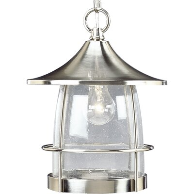 Triplehorn 1-Light Clear Hanging Lantern Finish: Brushed Nickel