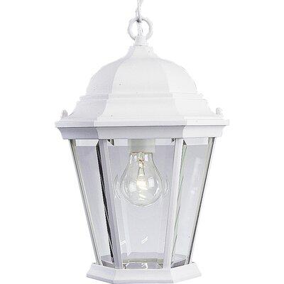 Triplehorn1-Light Hanging Lantern