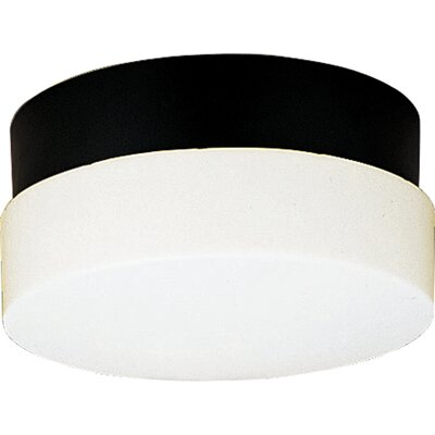Hard-Nox 2-Light Flush Mount