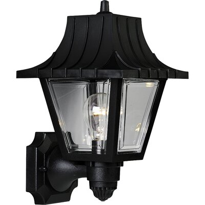 Triplehorn Outdoor 1-Light Sconce in Clear Beveled Glass
