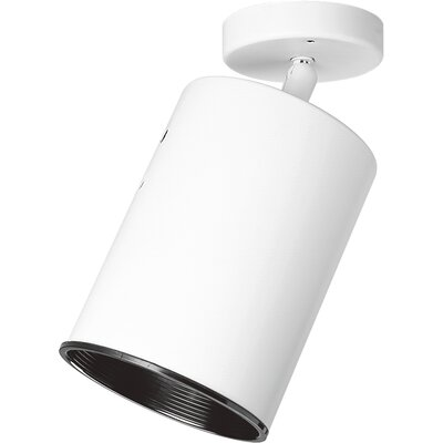 1-Light Semi-Flush Mount