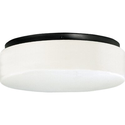 Hard-Nox 2-Light Flush Mount Finish: Black