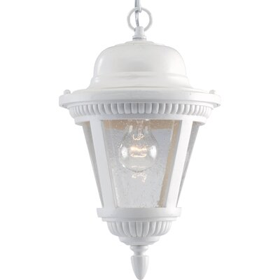 Triplehorn1-Light Ribbed Hanging Lantern