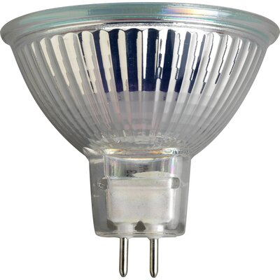 50W Halogen Light Bulb (Set of 2)
