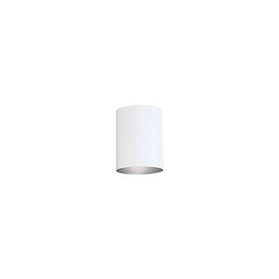 Cylinder 1-Light Flush Mount Shade Color: White