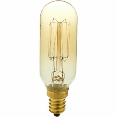 40W Candelabra base Light Bulb