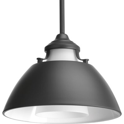 Haner 1-Light Mini Pendant Finish: Graphite