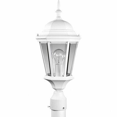 Triplehorn 1-Light Lantern Head in Clear Beveled Glass Finish: White