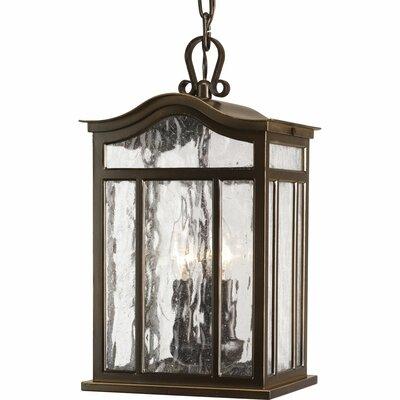Triplehorn 3-Light Outdoor Hanging Lantern
