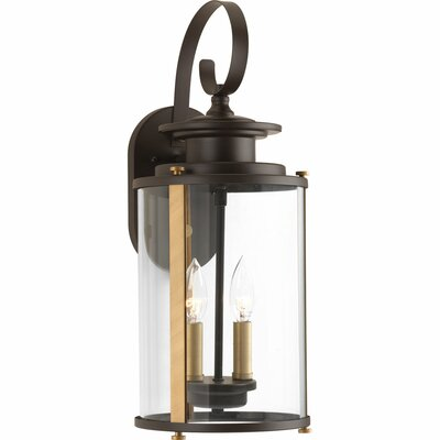 Evgenia 2-Light Outdoor Wall Lantern Finish: Antique Bronze