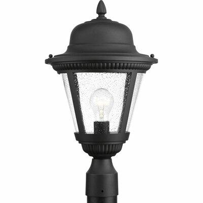 Triplehorn 1-Light Rustic Lantern Head Finish: Black