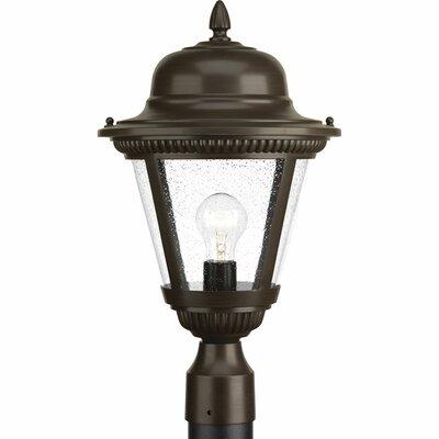 Triplehorn 1-Light Rustic Lantern Head Finish: Antique Bronze