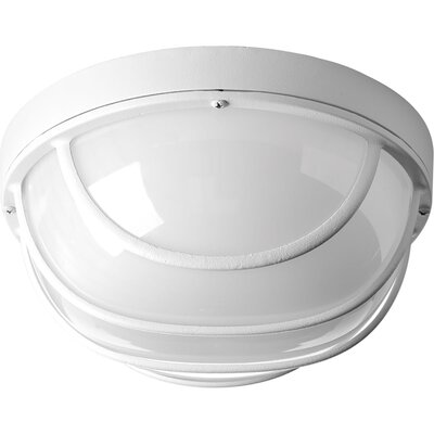 Bulkheads 1-Light Flush Mount Finish: White