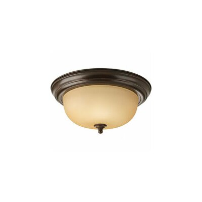 2-Light Ceiling Light