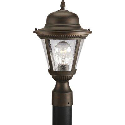 Triplehorn 1-Light Lantern Head in Bronze