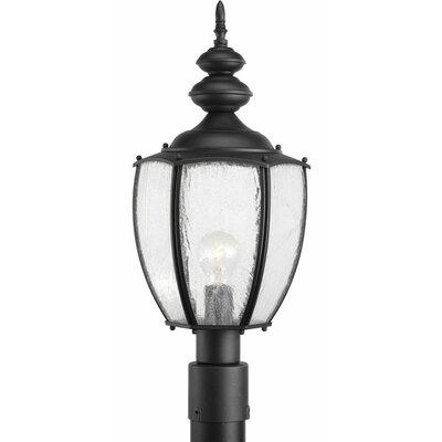 Triplehorn 1-Light Incandescent Antique Lantern Head Finish: Black