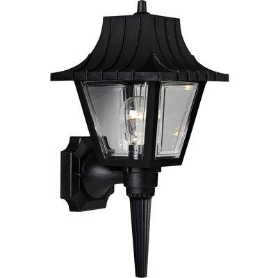Triplehorn Outdoor 1-Light Sconce