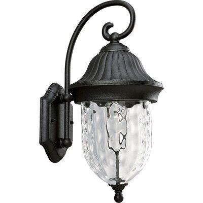 Triplehorn 1-Light Outdoor Hammered Wall lantern
