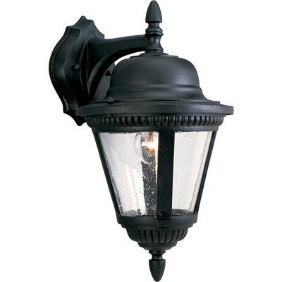 Triplehorn 1-Light Traditional Aluminum Wall Lantern