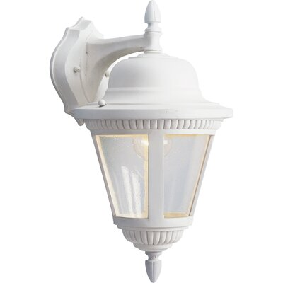 Triplehorn 1-Light Traditional Aluminum Wall Lantern Finish: White