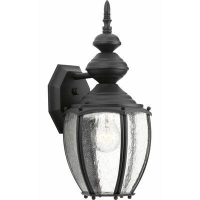 Triplehorn1-Light Wall Lantern in Clear Seeded Glass Finish: Black
