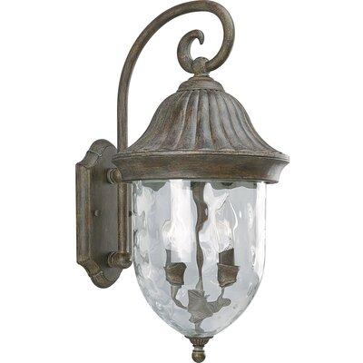 Triplehorn 2-Light Outdoor Beveled Wall Lantern