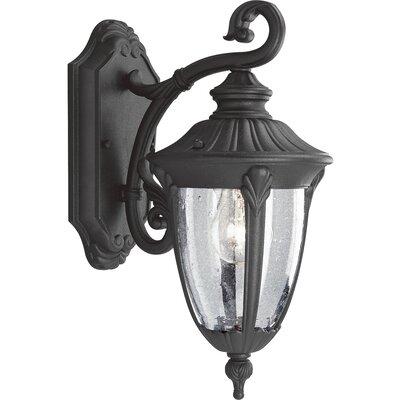 Triplehorn 1-Light Wall Styled Lantern