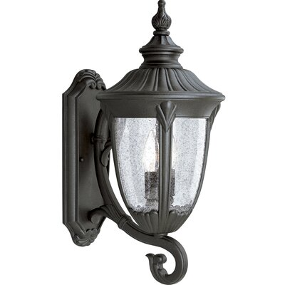 Triplehorn 2-Light Black  Outdoor Sconce