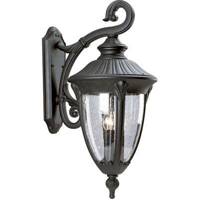 Triplehorn 3-Light Candelabra Wall Lantern
