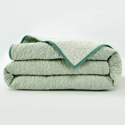 Fern Solid Coverlet Size: Full/Queen