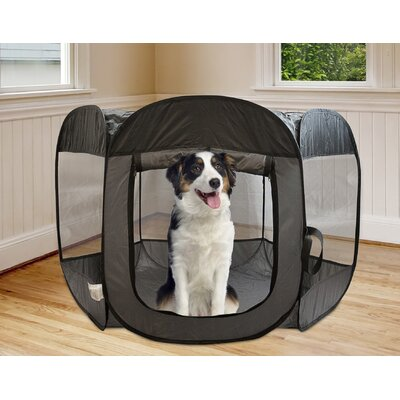 Kravitz Pop Open Collapsible Travel Pet Pen Size: 29 H x 51 W x 51 D, Color: Gray