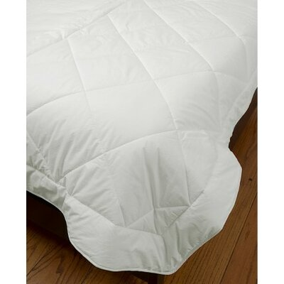 Quilted 100% Cotton Blanket Size: Twin