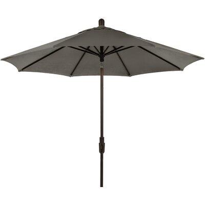 9 Zuma Shore Market Umbrella Color: Graphite