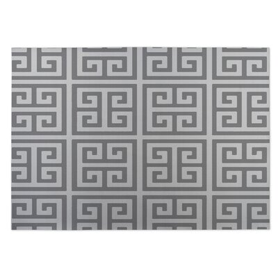 Ginger Gray Indoor/Outdoor Doormat Rug Size: 4 x 5