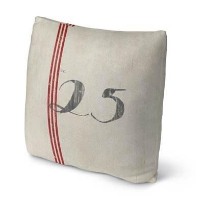 25 Throw Pillow Size: 16 H x 16 W x 4 D