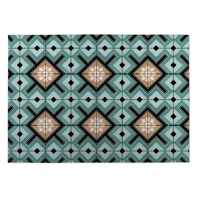 Aqua Indoor/Outdoor Doormat Rug Size: 4 x 5