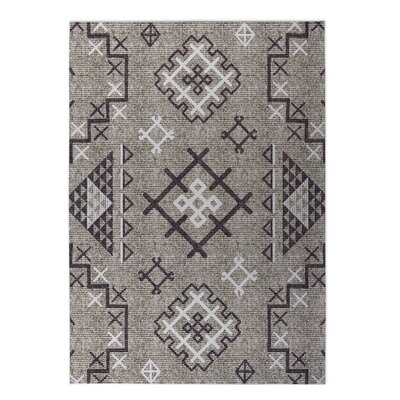 Cyrill Indoor/Outdoor Doormat Rug Size: 4 x 5
