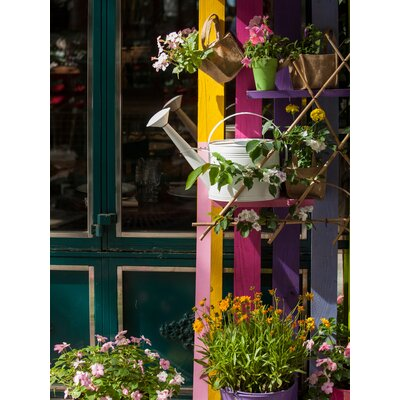 """Watering Cans and Flowers"" Photographic Print"