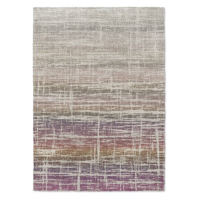 Death Valley Beige Area Rug Rug Size: 5 x 7