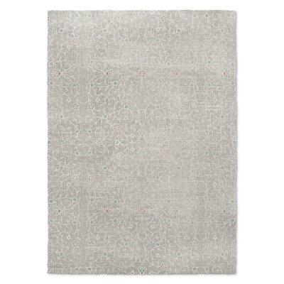 Gray Area Rug Rug Size: 2 x 3