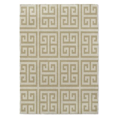 Ginger Brown Area Rug Rug Size: Rectangle 2 x 3