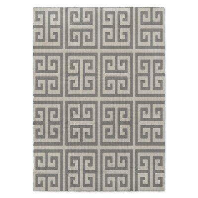 Ginger Gray Area Rug Rug Size: 5 x 7