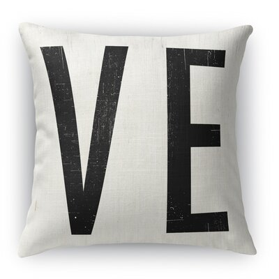 VE Indoor Throw Pillow Size: 16 H x 16 W