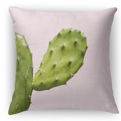 Southwest Cactus Closeup Throw Pillow Size: 16