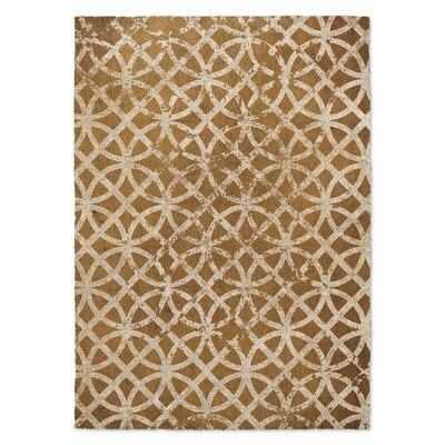 Freehold Rust Area Rug Rug Size: 8 x 10