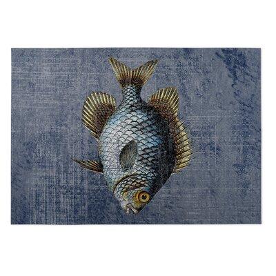 Ellenburg Doormat Rug Size: Square 8