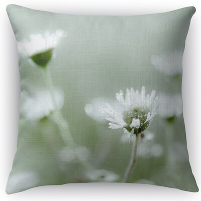 Shimmer Throw Pillow Size: 24 H x 24 W x 5 D
