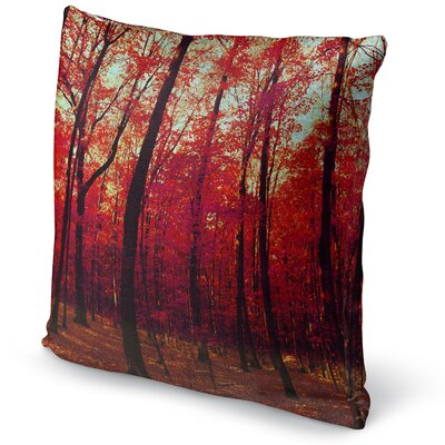 The True North Accent Pillow Size: 24 H x 24 W x 5 D